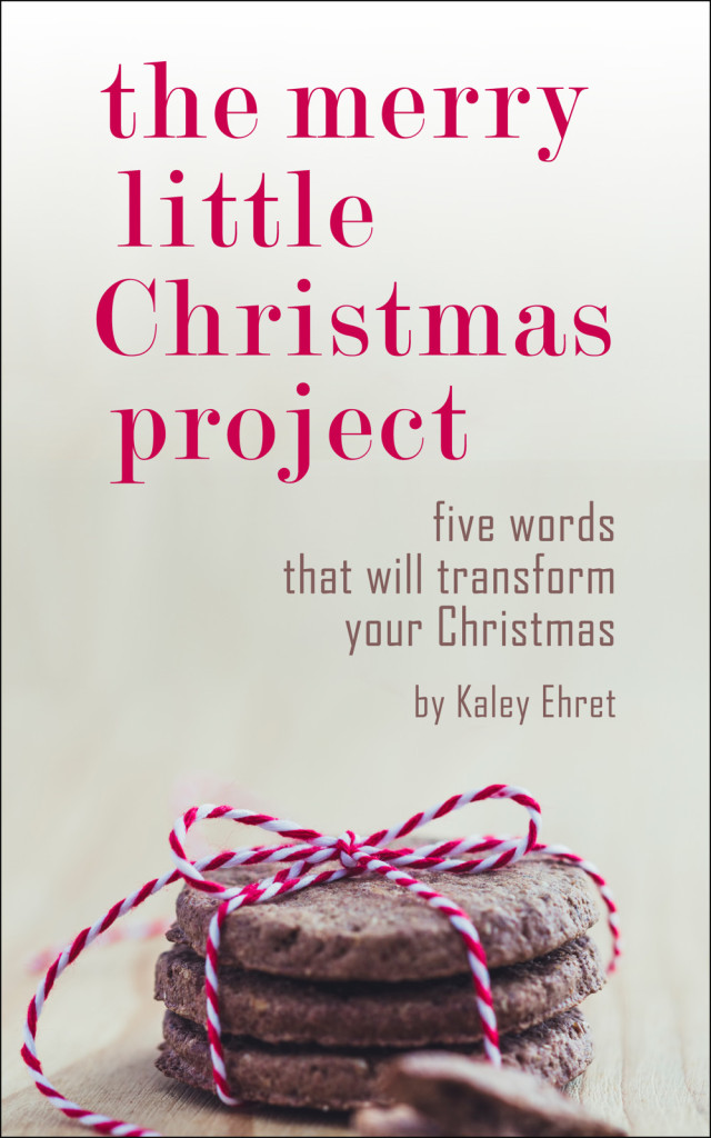Merry Little Christmas Project cover