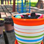 Summer Fun: Dirt Cake Recipe