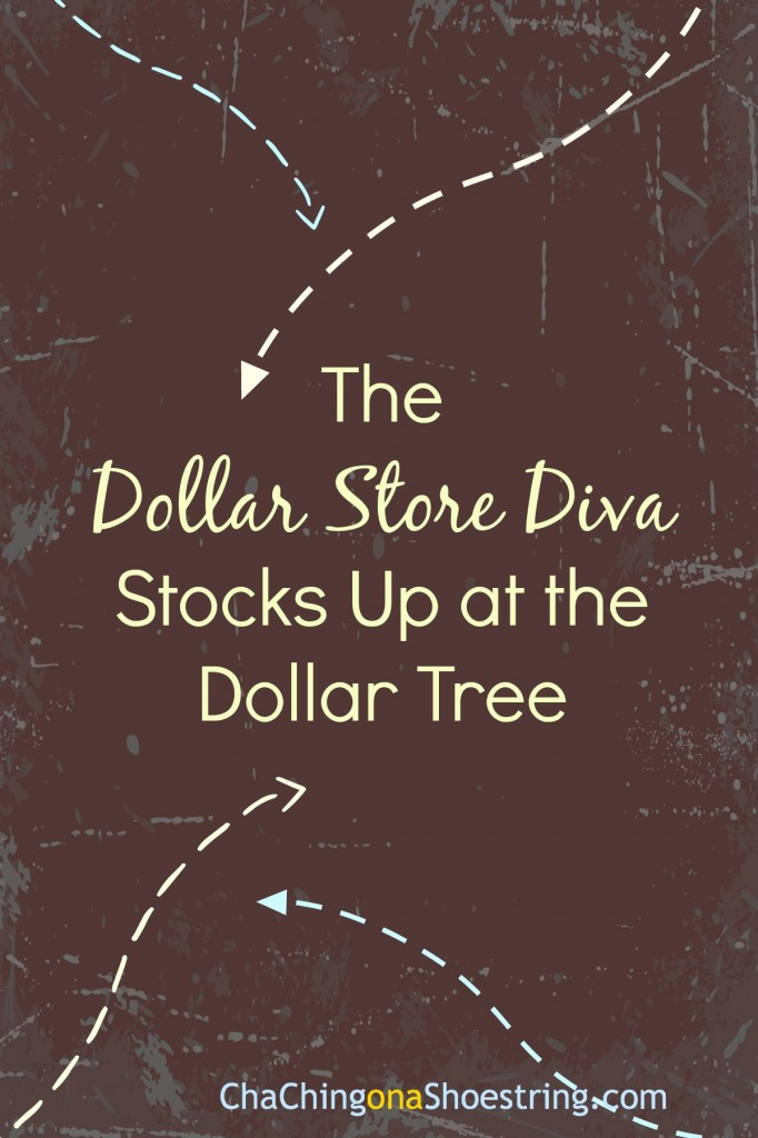 Dollar Store Diva Stocks Up