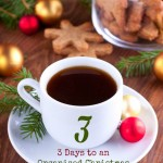 3 Days to an Organized Christmas