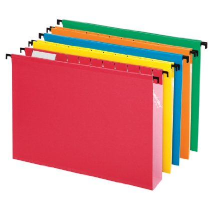 Organization Extra Capacity Hanging Files