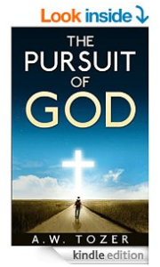 FREE Kindle eBook: The Pursuit...