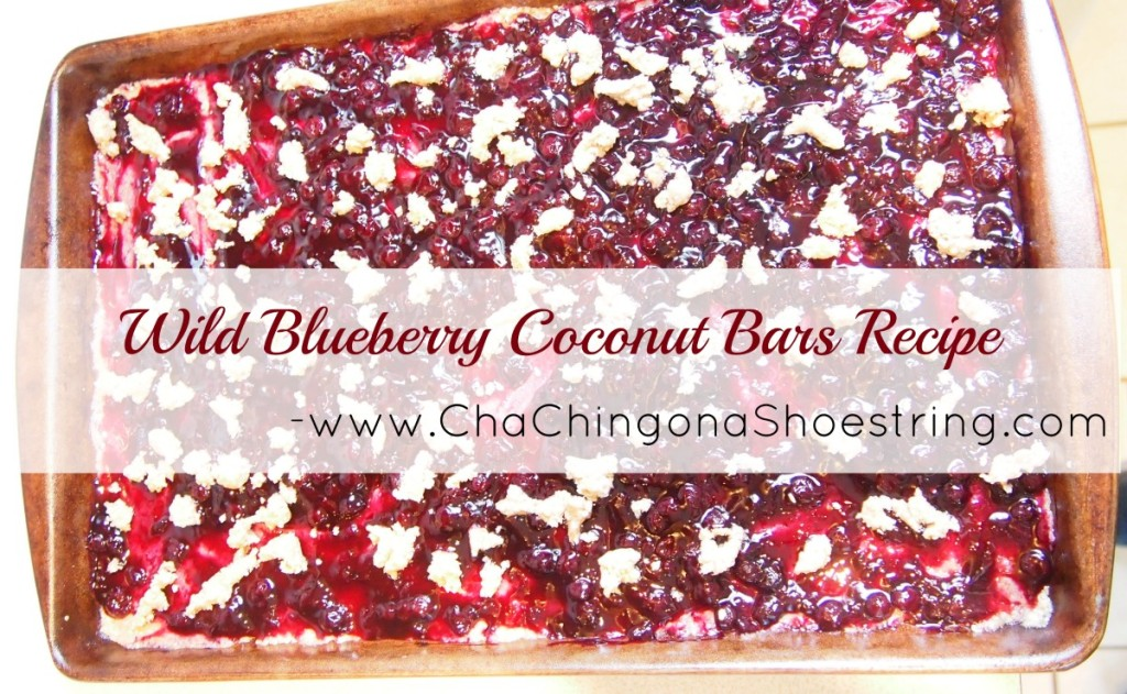 Wild Blueberry Coconut Bars Recipe