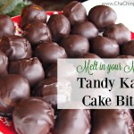 Tandy Kake Cake Bites Recipe (Melt in your Mouth Delicious!)